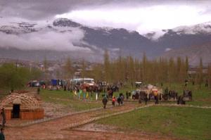 uzbek field
